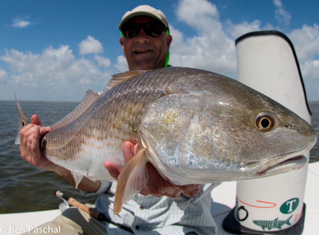 Laguna madre fly fishing august laguna madre outfitters for Trout fishing in texas