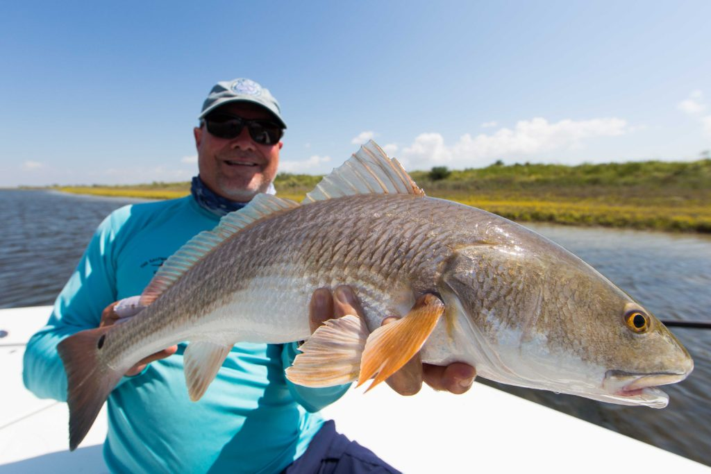 port mansfield redfish