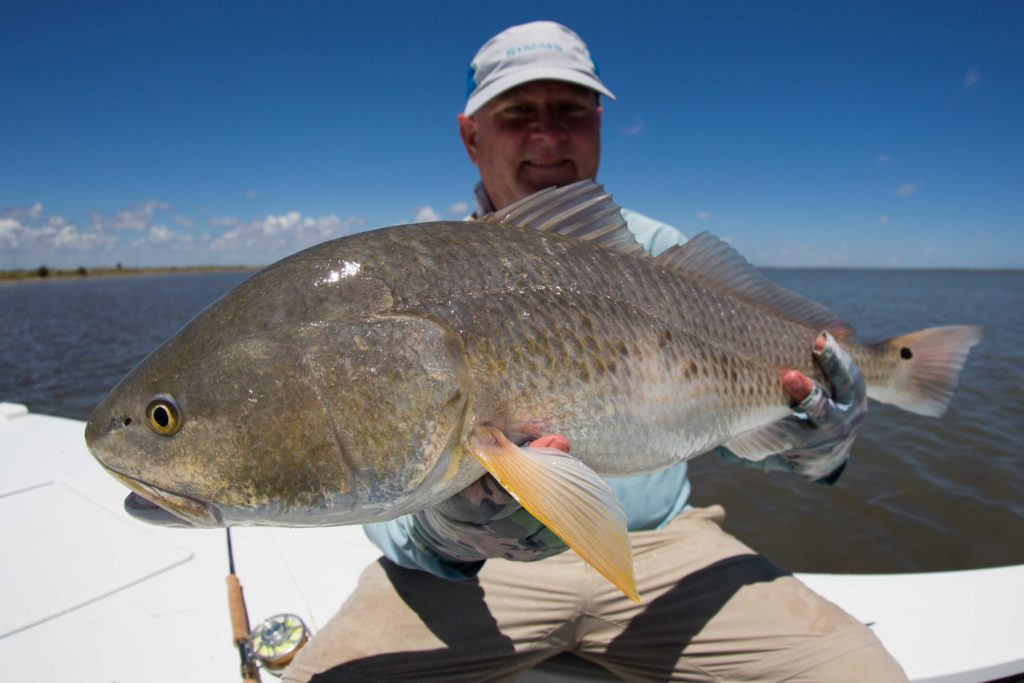 big redfish laguna madre