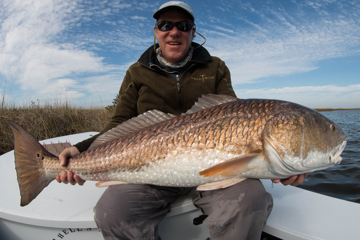 Fly fishing for bull redfish in louisianalaguna madre for Fishing in la