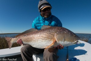 brandon big dog redfish